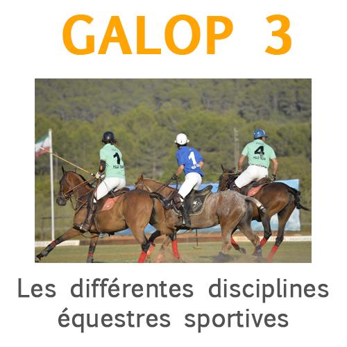 Galop 3, Identifier quelques disciplines équestres sportives et leurs caractéristiques, dont celles pratiquées dans son club