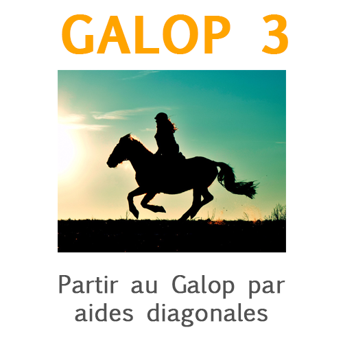 Galop 3, partir au galop par aides diagonales