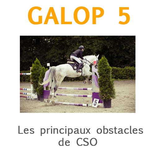 Les prinicpaux obstacles de CSO galop 5