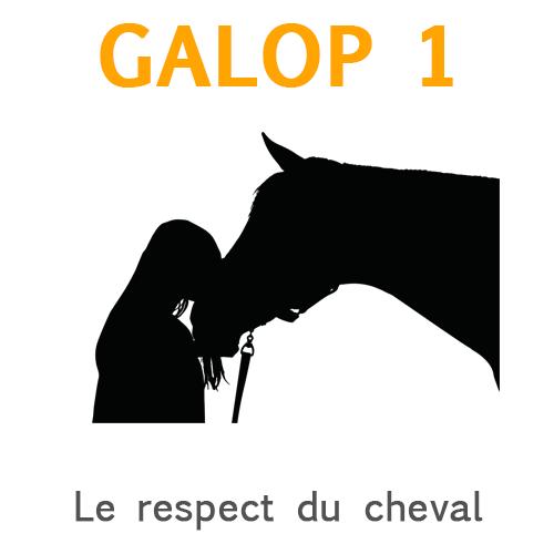 Respect du cheval