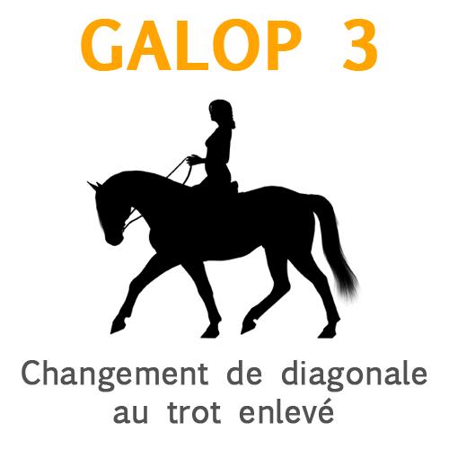 Galop 3, la raison du changement de diagonal au trot enlevé