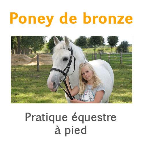 Poney de bronze pratique équestre à pied